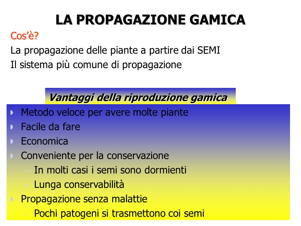 LA PROPAGAZIONE GAMICA Cosè.