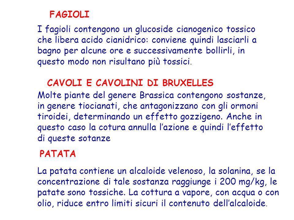FAGIOLI I fagioli contengono un glucoside cianogenico tossico che libera acido cianidrico: conviene quindi lasciarli a bagno per alcune ore e successi