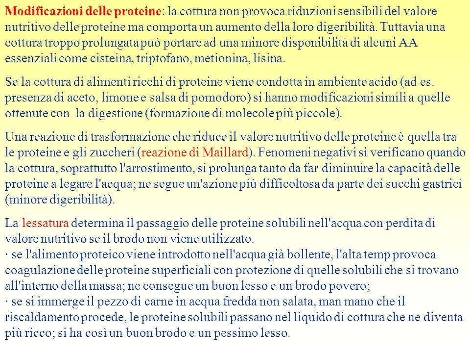 Modificazioni delle proteine: la cottura non provoca riduzioni sensibili del valore nutritivo delle proteine ma comporta un aumento della loro digerib