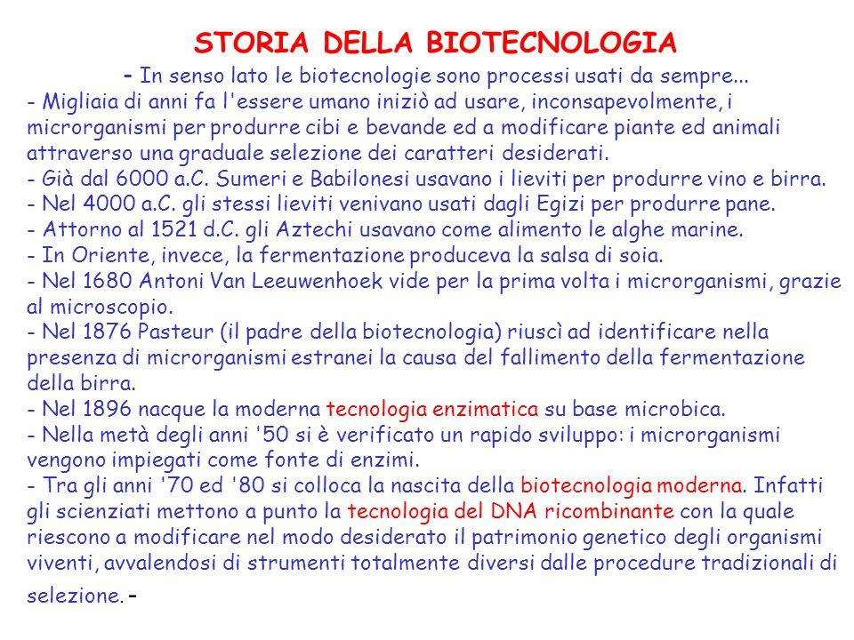 Con il termine biotecnologia si indica l utilizzazione in modo programmato di sistemi biologici per la produzione di beni e servizi.