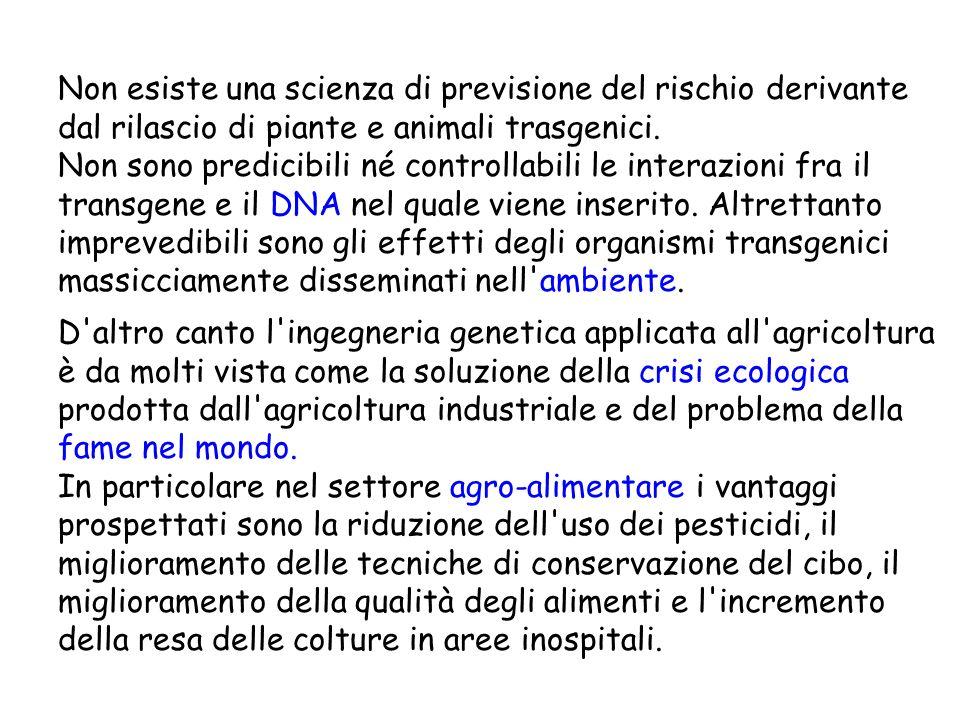 Non esiste una scienza di previsione del rischio derivante dal rilascio di piante e animali trasgenici.