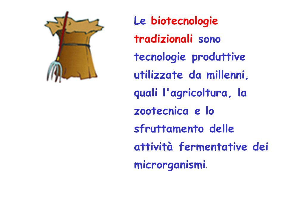 l inquinamento genico o bioinquinamento la bioinvasione l inquinamento chimico sviluppo di specie virali ibride