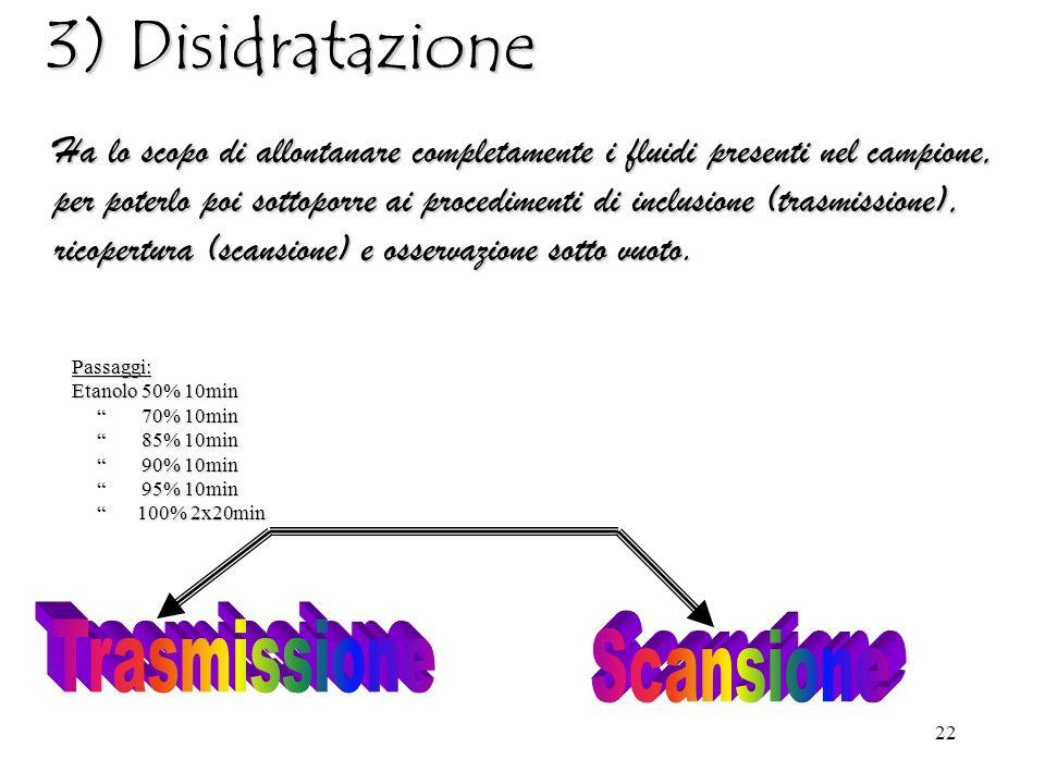 22 3) Disidratazione Ha lo scopo di allontanare completamente i fluidi presenti nel campione, per poterlo poi sottoporre ai procedimenti di inclusione (trasmissione), ricopertura (scansione) e osservazione sotto vuoto.