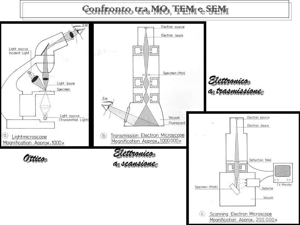 8 Confronto tra MO, TEM e SEM Ottico Ottico Elettronico a scansione Elettronico a scansione Elettronico a trasmissione Elettronico a trasmissione