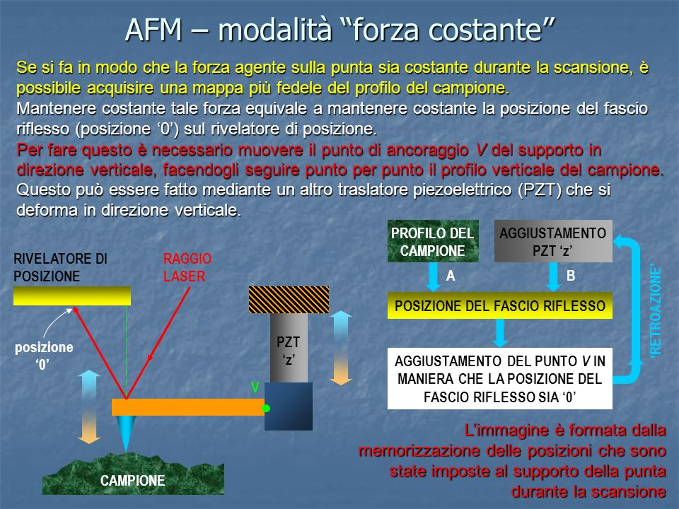 AFM – modalità forza costante Se si fa in modo che la forza agente sulla punta sia costante durante la scansione, è possibile acquisire una mappa più