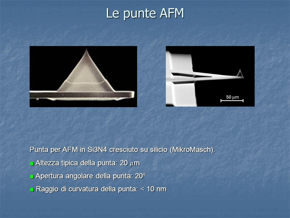 Le punte AFM Punta per AFM in Si3N4 cresciuto su silicio (MikroMasch). Altezza tipica della punta: 20 m Apertura angolare della punta: 20° Raggio di c