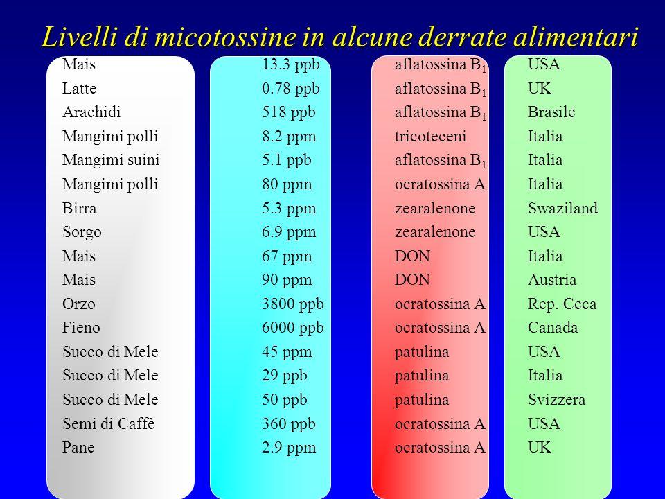Livelli di micotossine in alcune derrate alimentari Mais13.3 ppbaflatossina B 1 USA Latte0.78 ppbaflatossina B 1 UK Arachidi518 ppbaflatossina B 1 Bra