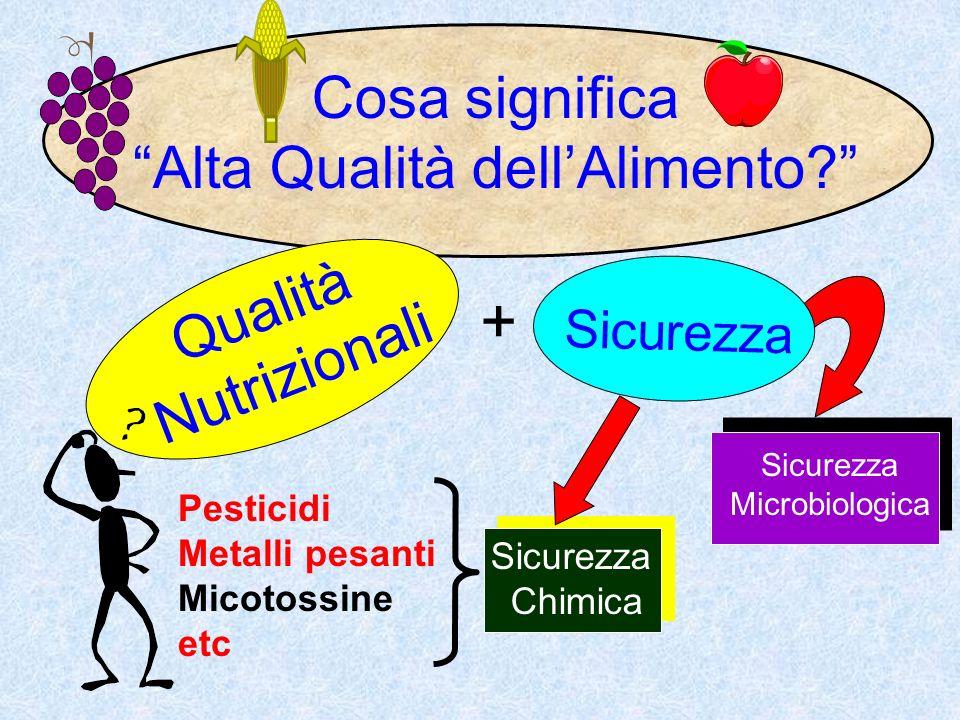 Cosa significa Alta Qualità dellAlimento? Qualità Nutrizionali Sicurezza Chimica Pesticidi Metalli pesanti Micotossine etc Sicurezza Microbiologica +