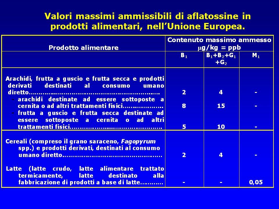 Valori massimi ammissibili di aflatossine in prodotti alimentari, nellUnione Europea. Circolare Ministeriale del 9 giugno 1999, n. 10 (G.U. n. 135 del