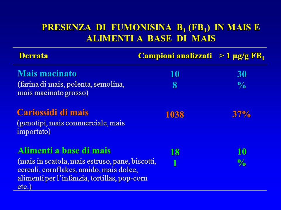 Mais macinato (farina di mais, polenta, semolina, mais macinato grosso) Cariossidi di mais (genotipi, mais commerciale, mais importato) Alimenti a bas