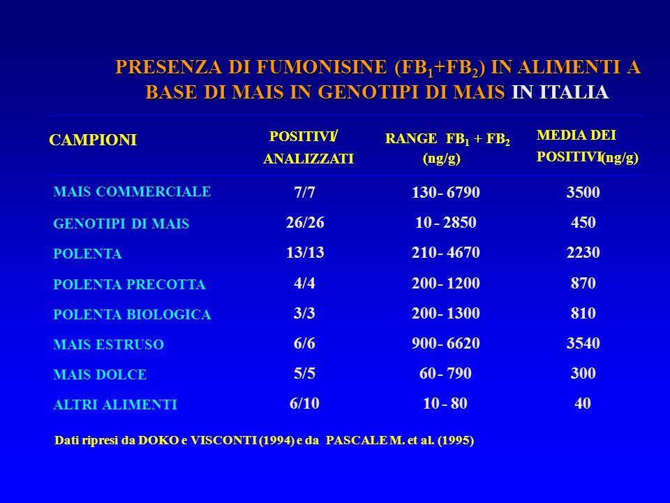Dati ripresi da DOKO e VISCONTI (1994) e da PASCALE M. et al. (1995) CAMPIONI POSITIVI / ANALIZZATI RANGE FB 1 + FB 2 (ng/g) MEDIA DEI POSITIVI (ng/g)