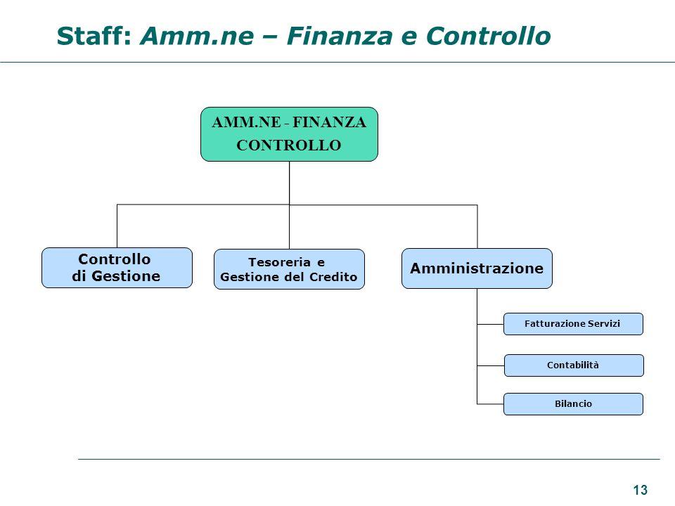 13 AMM.NE - FINANZA CONTROLLO Controllo di Gestione Amministrazione Tesoreria e Gestione del Credito Contabilità Fatturazione Servizi Bilancio Staff: