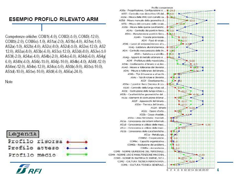 24 ESEMPIO PROFILO RILEVATO ARM