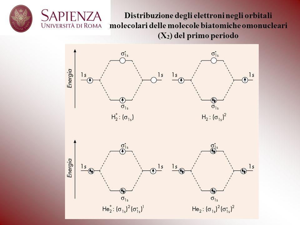 Distribuzione degli elettroni negli orbitali molecolari delle molecole biatomiche omonucleari (X 2 ) del primo periodo