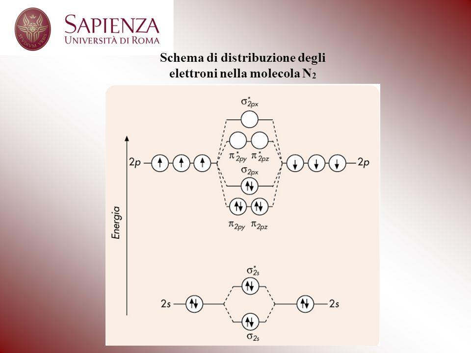 Schema di distribuzione degli elettroni nella molecola N 2