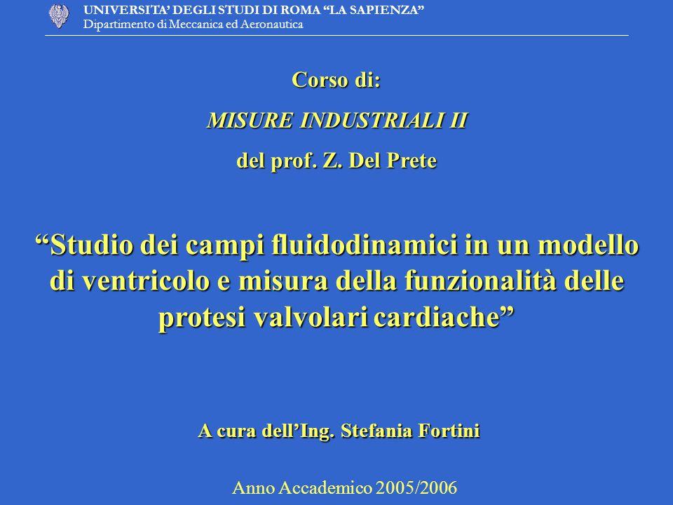 UNIVERSITA DEGLI STUDI DI ROMA LA SAPIENZA Dipartimento di Meccanica ed Aeronautica Studio dei campi fluidodinamici in un modello di ventricolo e misu