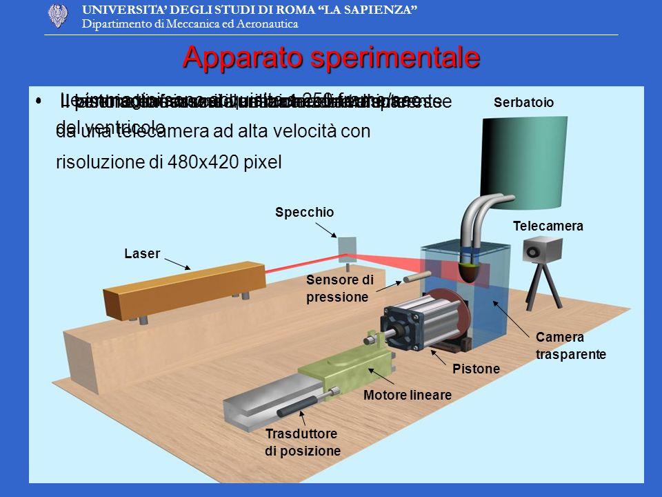 UNIVERSITA DEGLI STUDI DI ROMA LA SAPIENZA Dipartimento di Meccanica ed Aeronautica Apparato sperimentale Serbatoio Camera trasparente Laser Specchio