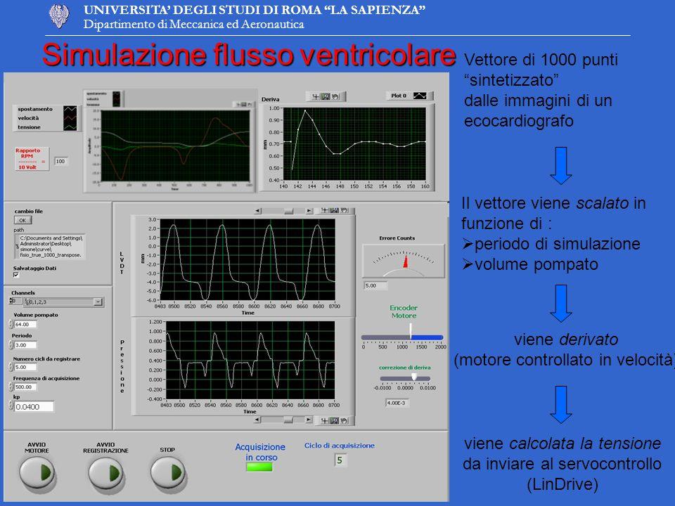 UNIVERSITA DEGLI STUDI DI ROMA LA SAPIENZA Dipartimento di Meccanica ed Aeronautica Simulazione flusso ventricolare Vettore di 1000 punti sintetizzato