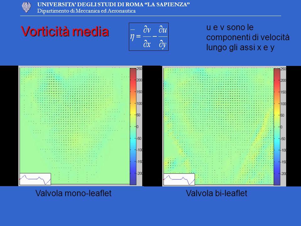 UNIVERSITA DEGLI STUDI DI ROMA LA SAPIENZA Dipartimento di Meccanica ed Aeronautica Vorticità media u e v sono le componenti di velocità lungo gli ass