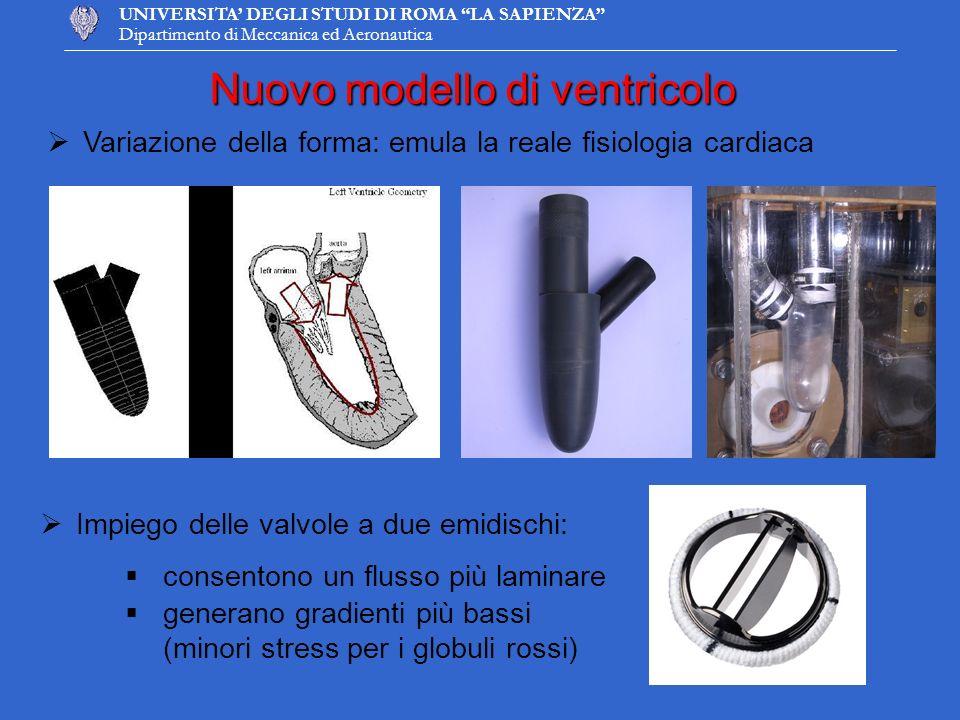 UNIVERSITA DEGLI STUDI DI ROMA LA SAPIENZA Dipartimento di Meccanica ed Aeronautica Nuovo modello di ventricolo Variazione della forma: emula la reale