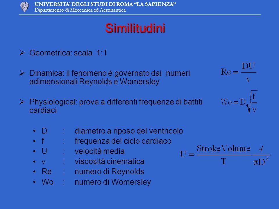 UNIVERSITA DEGLI STUDI DI ROMA LA SAPIENZA Dipartimento di Meccanica ed AeronauticaSimilitudini Geometrica: scala 1:1 Dinamica: il fenomeno è governat