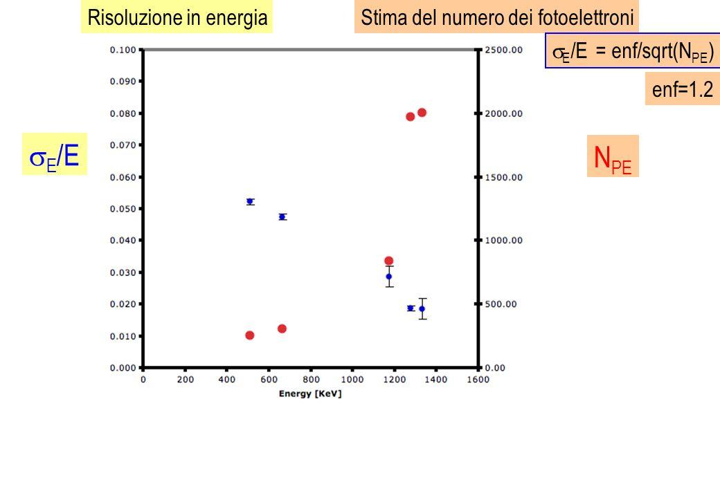 Risoluzione in energiaStima del numero dei fotoelettroni E /E E /E = enf/sqrt(N PE ) N PE enf=1.2