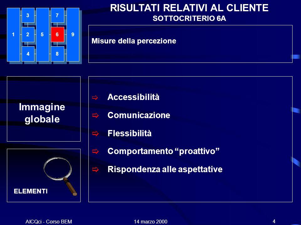 AICQci - Corso BEM Alenia 14 marzo 20004 ELEMENTI RISULTATI RELATIVI AL CLIENTE SOTTOCRITERIO 6A Misure della percezione Accessibilità Comunicazione F