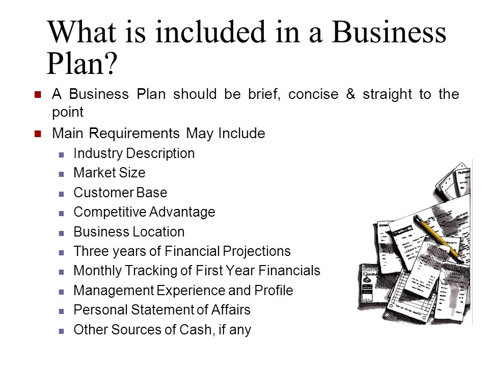 What is included in a Business Plan? A Business Plan should be brief, concise & straight to the point Main Requirements May Include Industry Descripti
