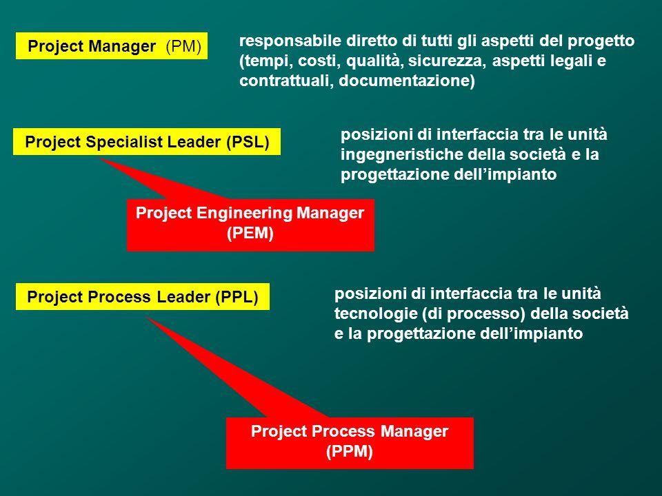 Project Manager (PM) responsabile diretto di tutti gli aspetti del progetto (tempi, costi, qualità, sicurezza, aspetti legali e contrattuali, document
