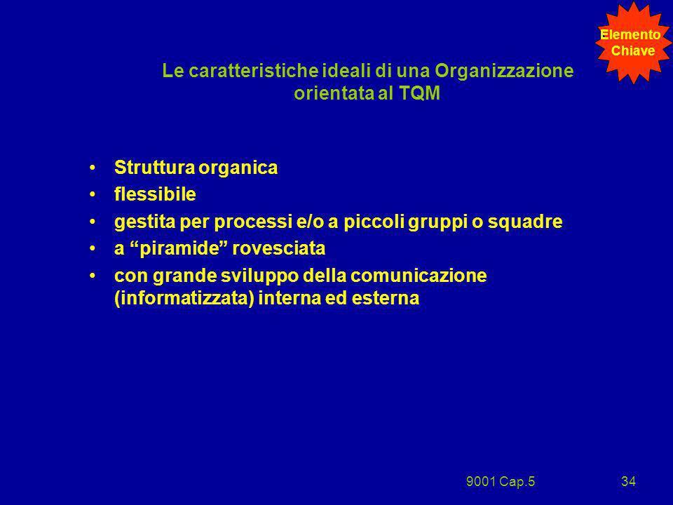 9001 Cap.534 Le caratteristiche ideali di una Organizzazione orientata al TQM Struttura organica flessibile gestita per processi e/o a piccoli gruppi