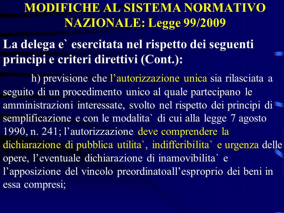 MODIFICHE AL SISTEMA NORMATIVO NAZIONALE: Legge 99/2009 La delega e` esercitata nel rispetto dei seguenti principi e criteri direttivi (Cont.): h) pre