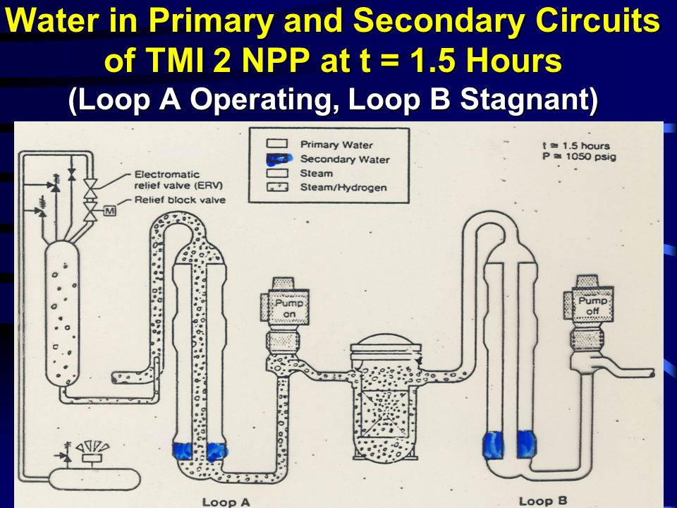 Water in Primary and Secondary Circuits of TMI 2 NPP at t = 1.5 Hours (Loop A Operating, Loop B Stagnant)