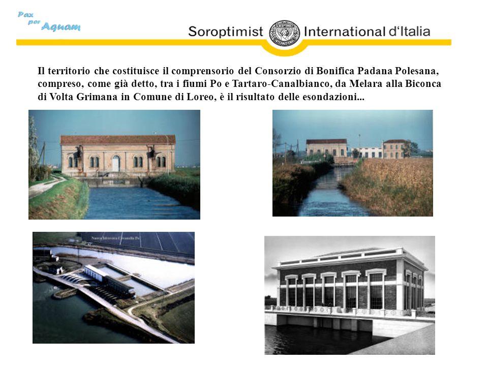 Il territorio che costituisce il comprensorio del Consorzio di Bonifica Padana Polesana, compreso, come già detto, tra i fiumi Po e Tartaro-Canalbianc