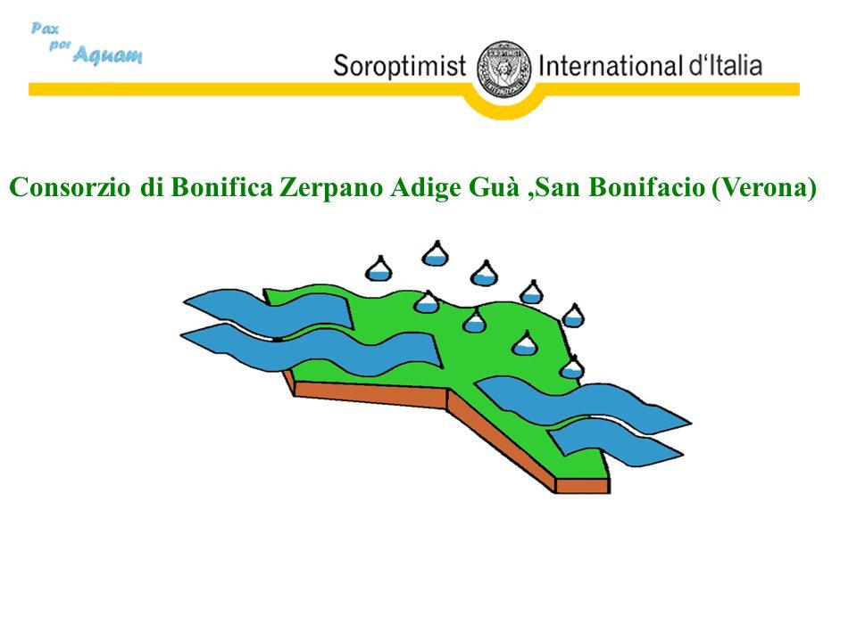 II Consorzio di Bonifica ADIGE GARDA, è stato costituito con deliberazione della Giunta Regionale del Veneto n.