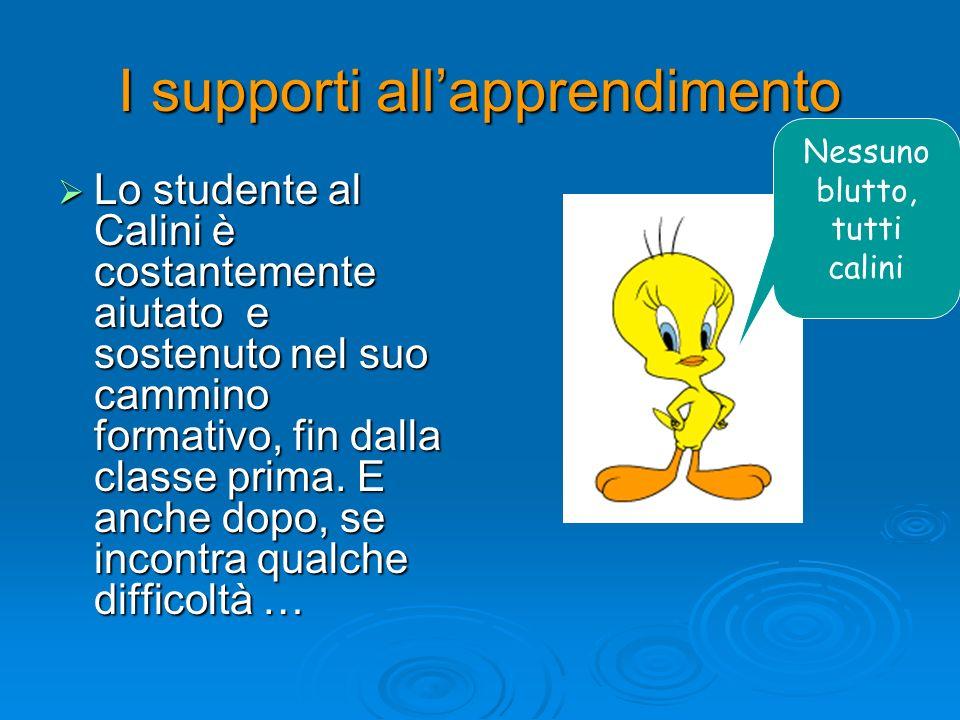 I supporti allapprendimento Lo studente al Calini è costantemente aiutato e sostenuto nel suo cammino formativo, fin dalla classe prima. E anche dopo,