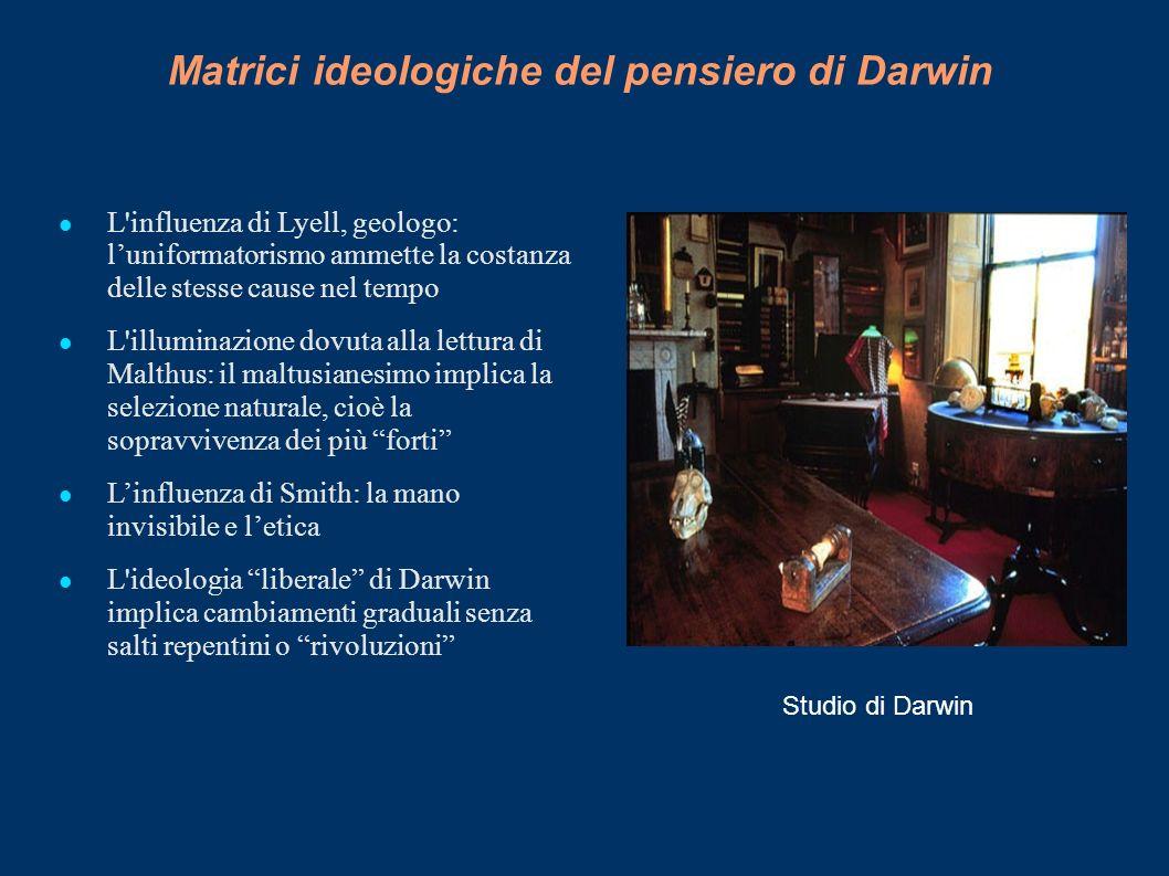 Matrici ideologiche del pensiero di Darwin L'influenza di Lyell, geologo: luniformatorismo ammette la costanza delle stesse cause nel tempo L'illumina