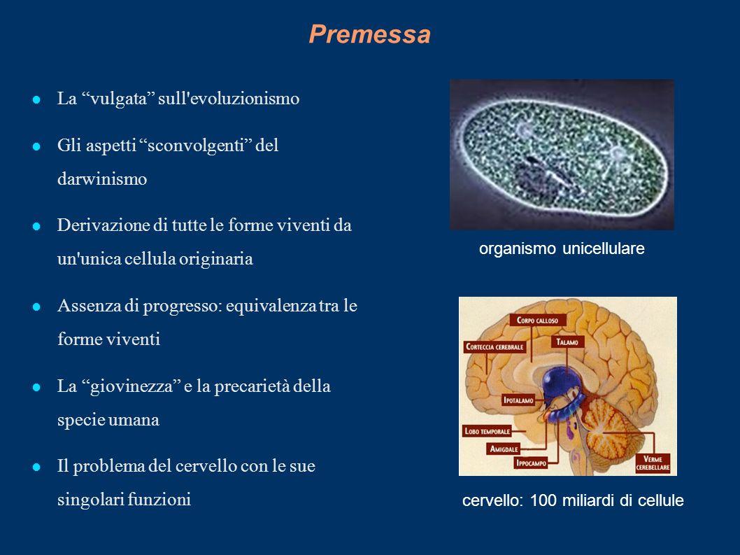 Premessa La vulgata sull'evoluzionismo Gli aspetti sconvolgenti del darwinismo Derivazione di tutte le forme viventi da un'unica cellula originaria As