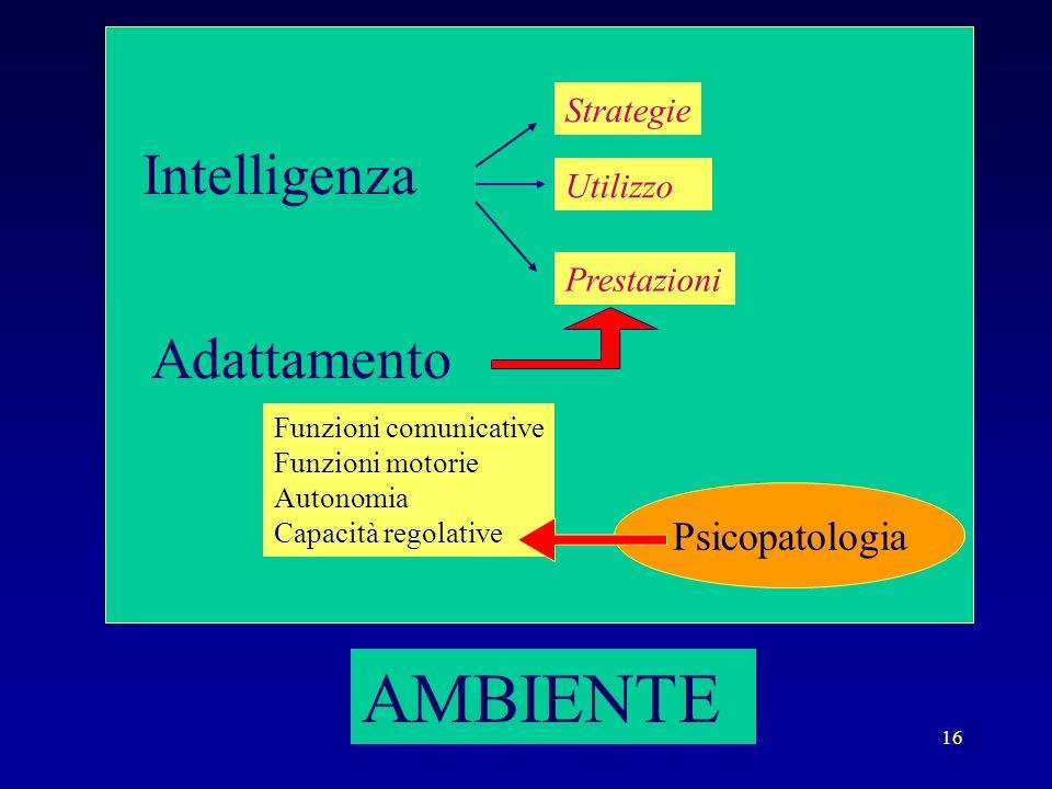 16 AMBIENTE Intelligenza Adattamento Prestazioni Strategie Utilizzo Funzioni comunicative Funzioni motorie Autonomia Capacità regolative Psicopatologi