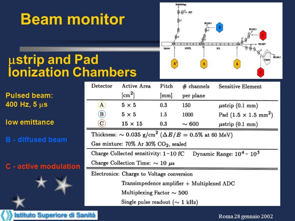 Roma 28 gennaio 2002 vista laterale esplosa strip camera Materiale lungo il fascio: ~35 mg/cm 2 E/E ~0.4% a 60 MeV Regime di ionizzazione: HV < 1000 V Miscela di gas: 70%Ar, 30%CO 2 flussato in camera sigillata Geometria: Gap: 4 mm, Pitch 300 m