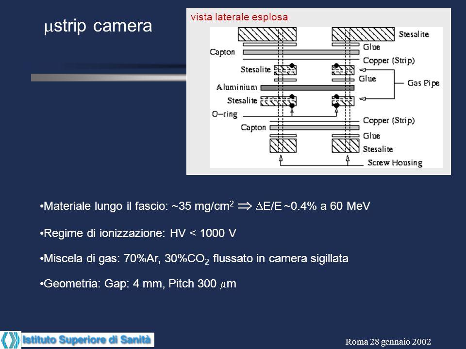 Roma 28 gennaio 2002 vista laterale esplosa strip camera Materiale lungo il fascio: ~35 mg/cm 2 E/E ~0.4% a 60 MeV Regime di ionizzazione: HV < 1000 V