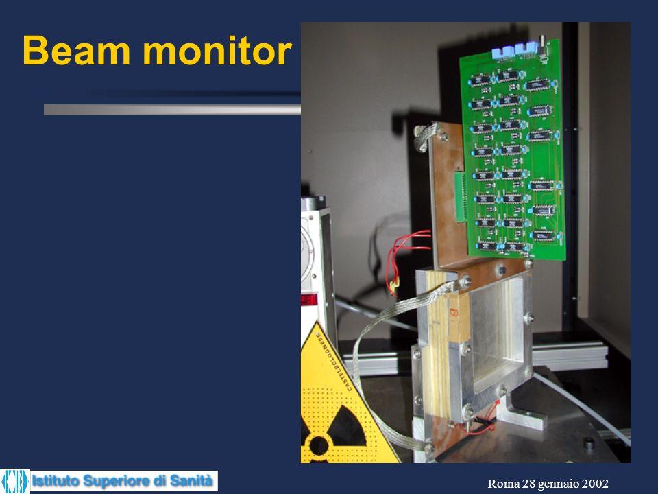 Beam monitor
