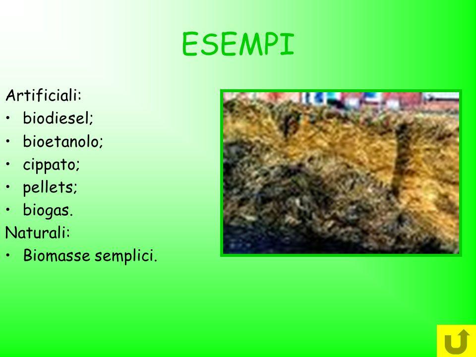 ESEMPI Artificiali: biodiesel; bioetanolo; cippato; pellets; biogas. Naturali: Biomasse semplici.