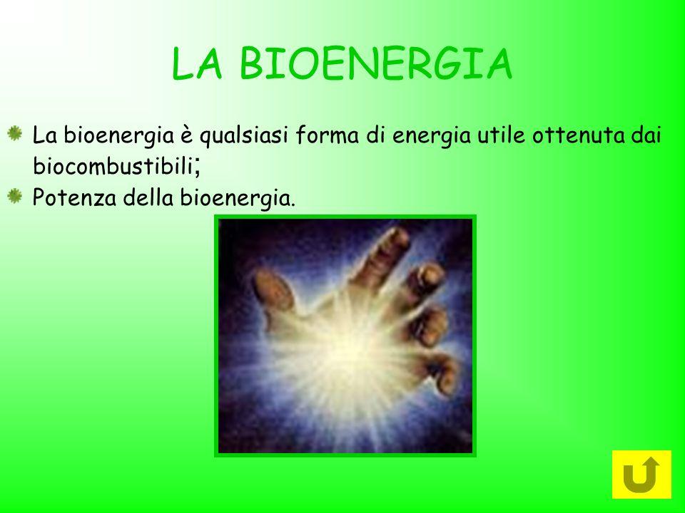 LA BIOENERGIA La bioenergia è qualsiasi forma di energia utile ottenuta dai biocombustibili ; Potenza della bioenergia.