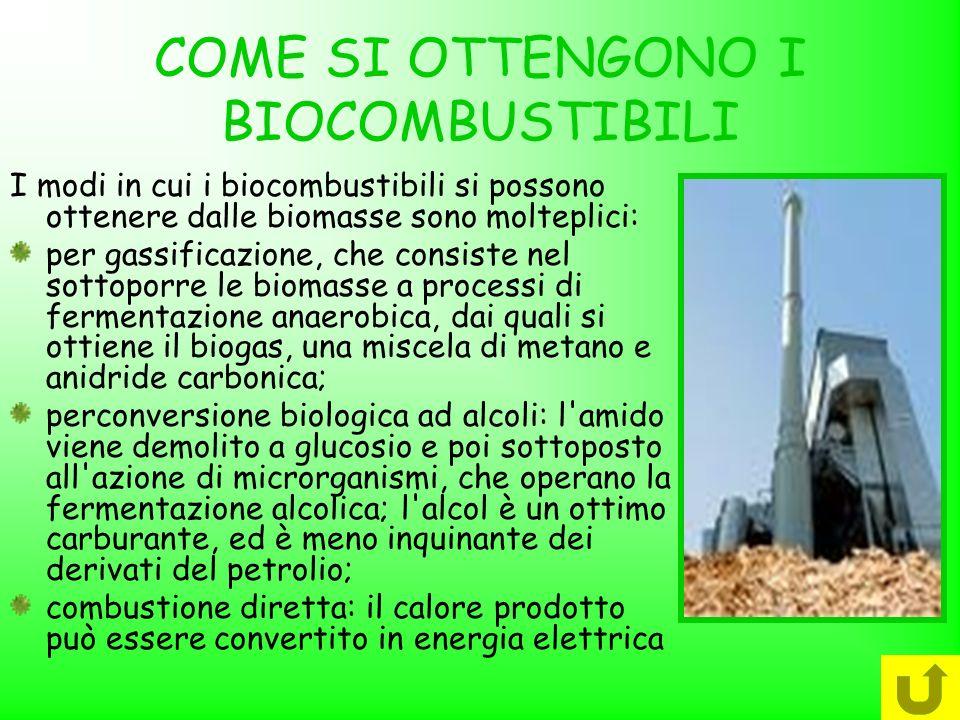 COME SI OTTENGONO I BIOCOMBUSTIBILI I modi in cui i biocombustibili si possono ottenere dalle biomasse sono molteplici: per gassificazione, che consis