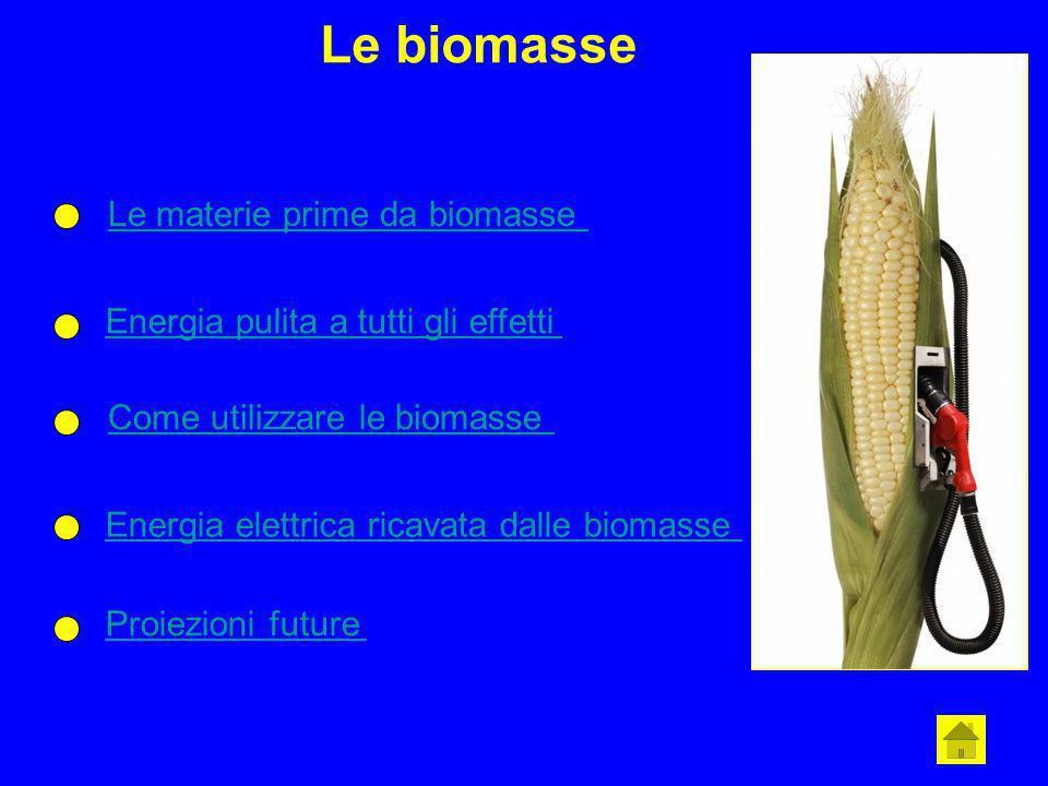 Le biomasse Le materie prime da biomasse Energia pulita a tutti gli effetti Come utilizzare le biomasse Energia elettrica ricavata dalle biomasse Proi