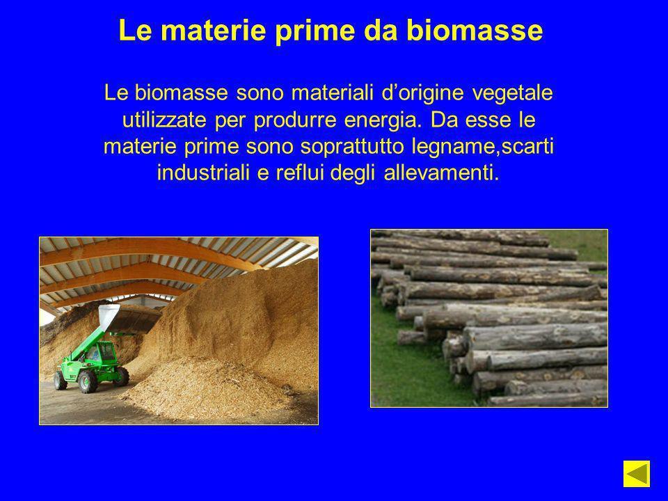Le materie prime da biomasse Le biomasse sono materiali dorigine vegetale utilizzate per produrre energia. Da esse le materie prime sono soprattutto l