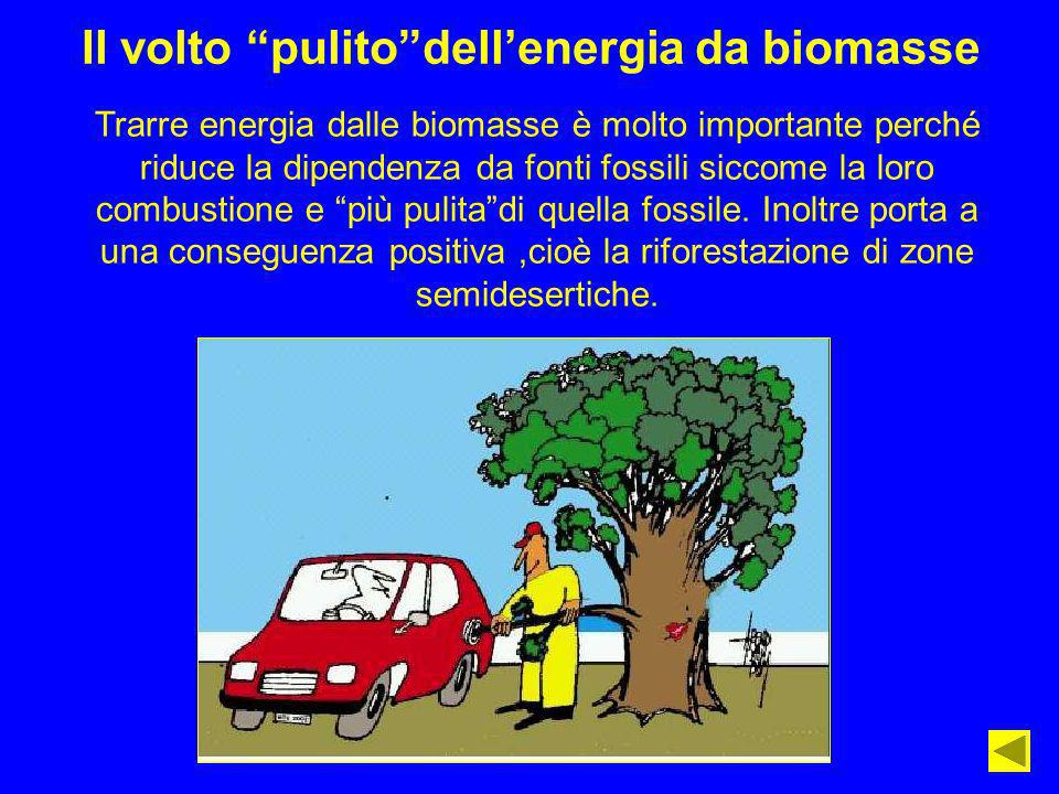 Il volto pulitodellenergia da biomasse Trarre energia dalle biomasse è molto importante perché riduce la dipendenza da fonti fossili siccome la loro c