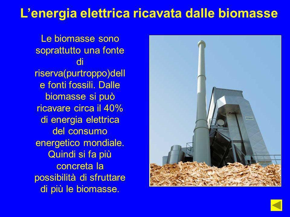 Lenergia elettrica ricavata dalle biomasse Le biomasse sono soprattutto una fonte di riserva(purtroppo)dell e fonti fossili. Dalle biomasse si può ric