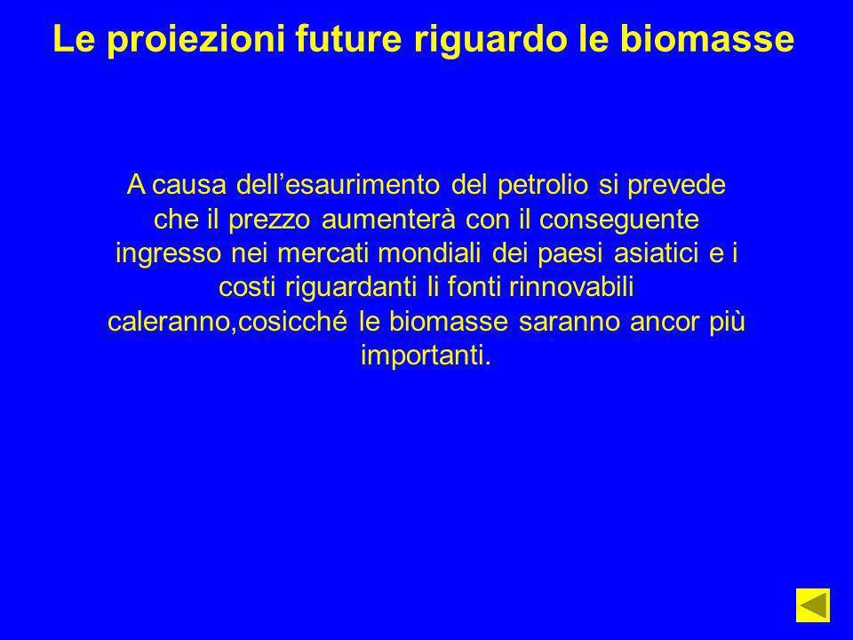Le proiezioni future riguardo le biomasse A causa dellesaurimento del petrolio si prevede che il prezzo aumenterà con il conseguente ingresso nei merc