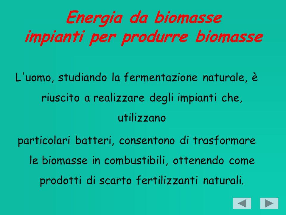 Energia da biomasse impianti per produrre biomasse L uomo, studiando la fermentazione naturale, è riuscito a realizzare degli impianti che, utilizzano particolari batteri, consentono di trasformare le biomasse in combustibili, ottenendo come prodotti di scarto fertilizzanti naturali.